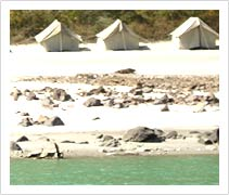 Camping & Rafting in Rishikesh
